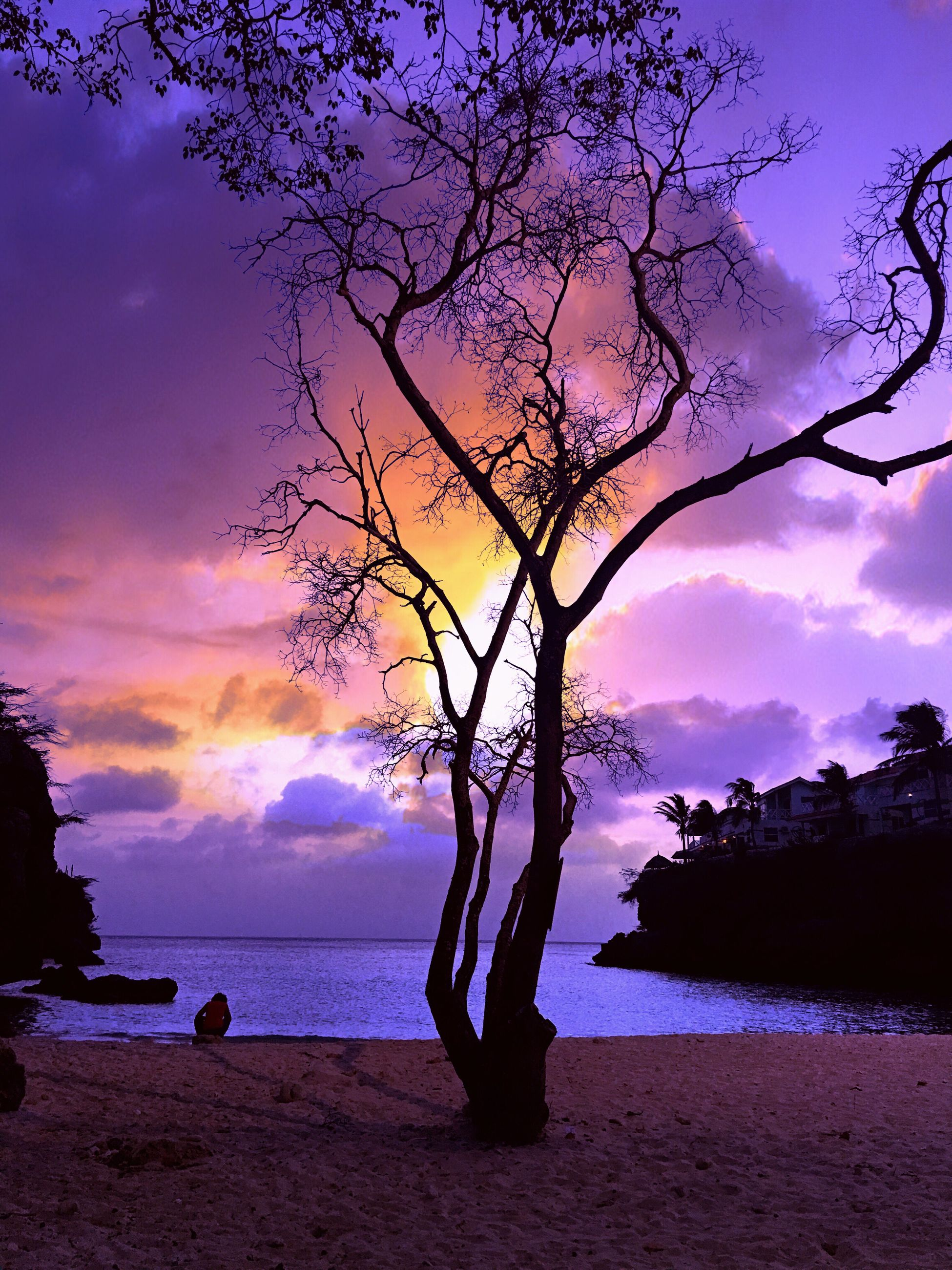 sea, beauty in nature, nature, water, tranquility, scenics, tranquil scene, tree, silhouette, horizon over water, sky, no people, beach, sunset, outdoors, day