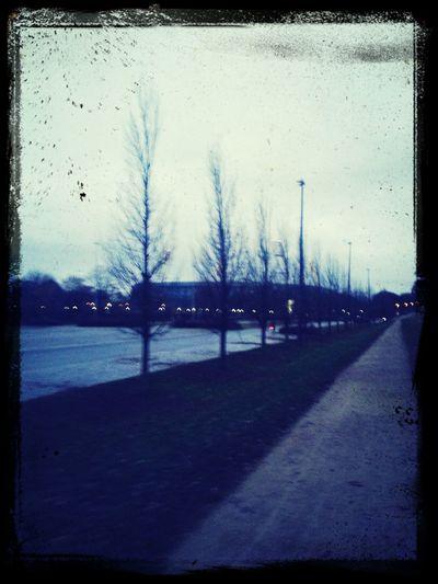 Walk Of Shame am Weserstadion
