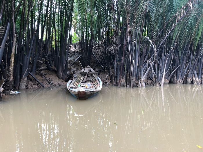 Canal Mekong River Oldboat Canal Canals And Waterways Water Plant Tree Nature No People Day Growth Tranquility Beauty In Nature Waterfront Lake Nautical Vessel Scenics - Nature Bamboo - Plant Reflection Tranquil Scene Outdoors