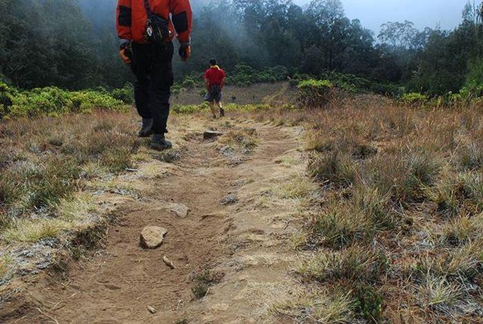 Jalur antara Rawaembik dan Puncakrengganis Gunungargopuro Jawatimur . Nikond80 2008 . Pendaki Adventure Trekking Hiking Backcountry Camping Savana