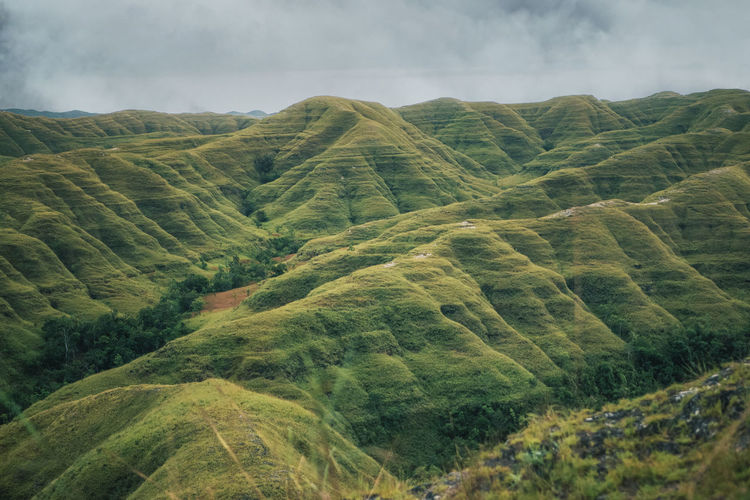 Hiliwuku hills, sumba