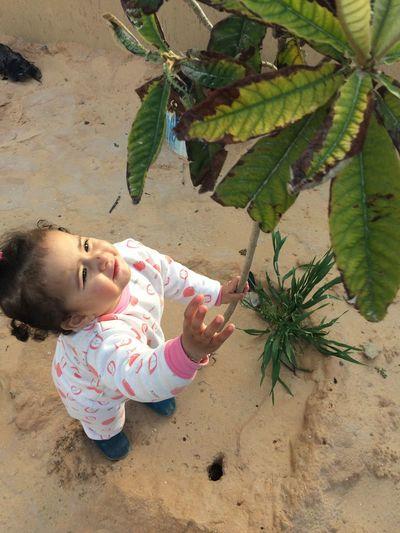 أوسا 😘 Girls Taking Photos Hi World Kids Photography Looking At Camera IPhone 5S Libya Misurata Tripoli ❤ ❤️ أوستي ربي يحميها 😍😘😋 أوسي ❤️ Libya