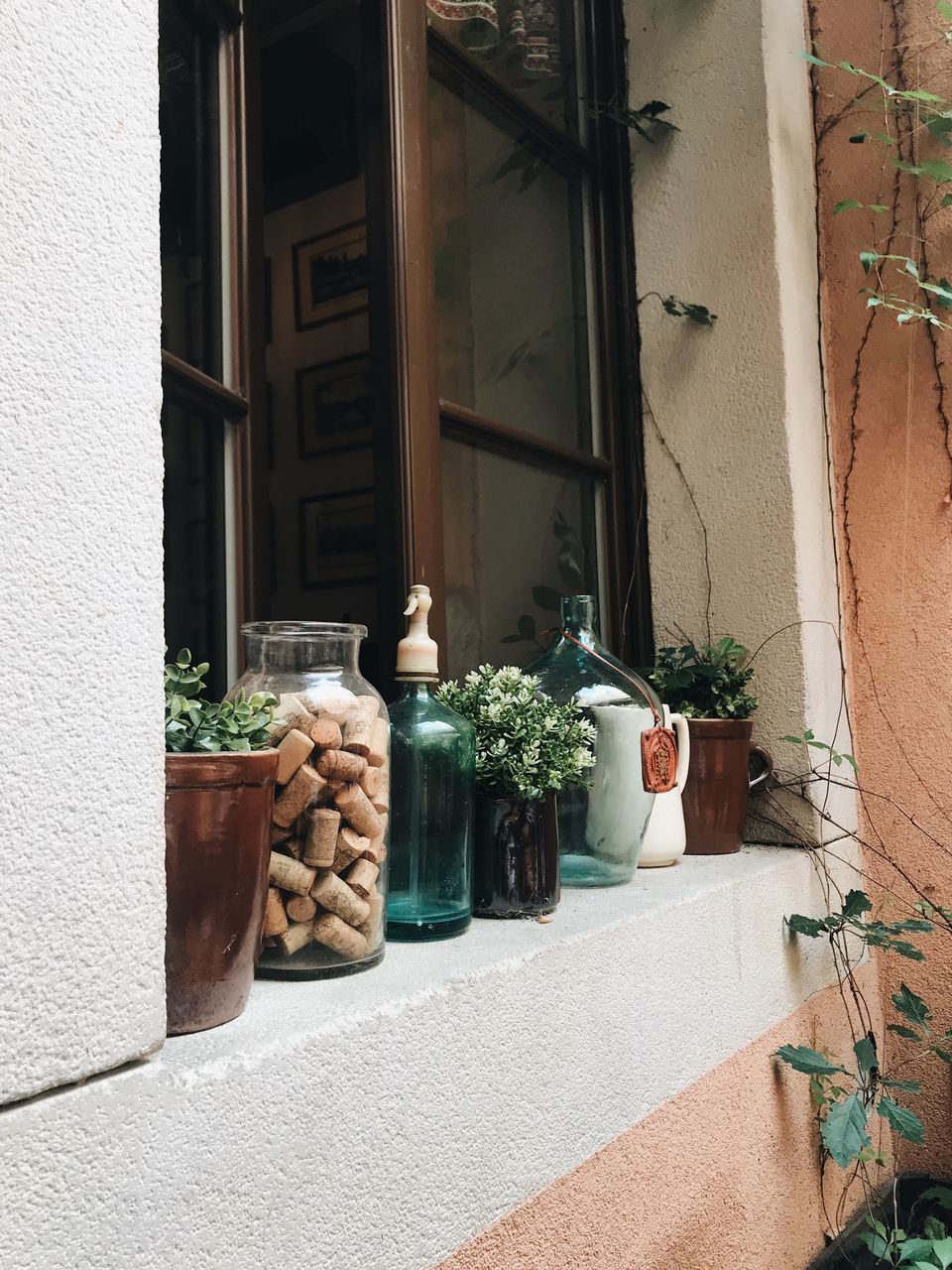 POTTED PLANTS ON WINDOW SILL BY BUILDING