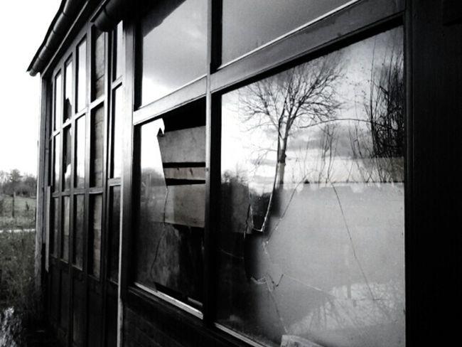 Experimenting Black & White Pure Photo Minimal No Edits
