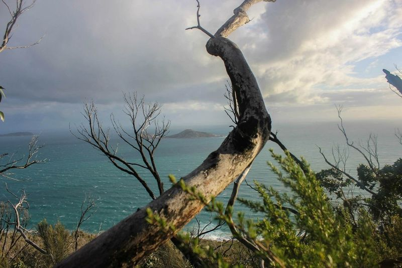 Perspectives Island Australia Paradise