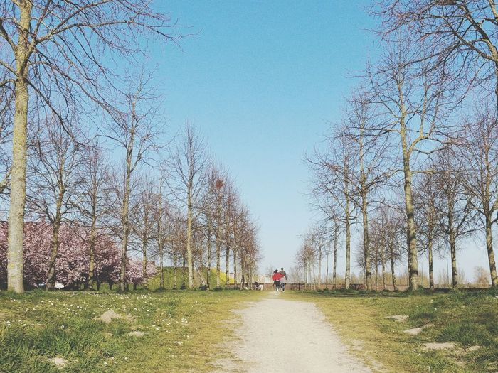 Man walking on footpath amidst bare trees against sky