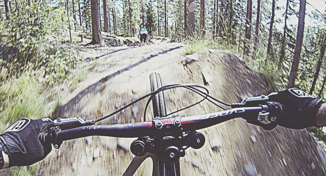 Summer day... Hanging Out Dirt Downhill Scott Genius MTB gGoproappgGoproofthedaygGopro3blackedition
