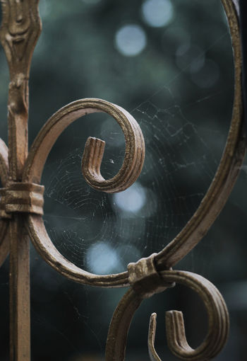 Close-up of spider web on metal