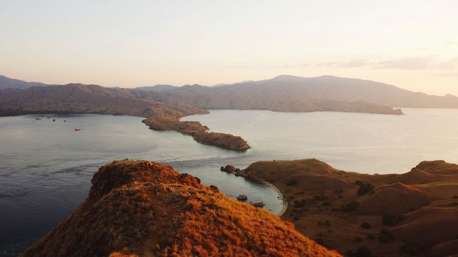 Komodoisland Komodo National Park INDONESIA ASIA Asian  Beautiful Beautiful Nature Holiday Dragonfly Hills Sunset Landscape Landscape_Collection Landscape_photography Landscape #Nature #photography Instagood Instadaily Insta Instalike