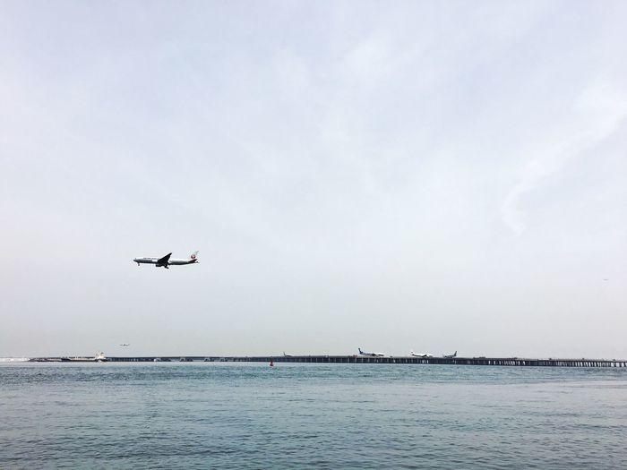Plane Airplane Sky Sea And Sky