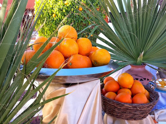 Palmleaves Palmenwedel Oranges Fruit Basket Fruit Plate Yummy Healthy Food Ladyphotographerofthemonth Showcase: April Fruits Sweet Fruits Sűsse Früchte Gesunde Ernährung Mouthwatering Lecker Leckerschmecker Orange Colour Orange And Green Learn & Shoot: Composition