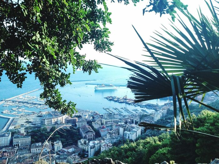 Panoramic Sea Sea And Sky Green Green Color Spettacular View Salerno Italy