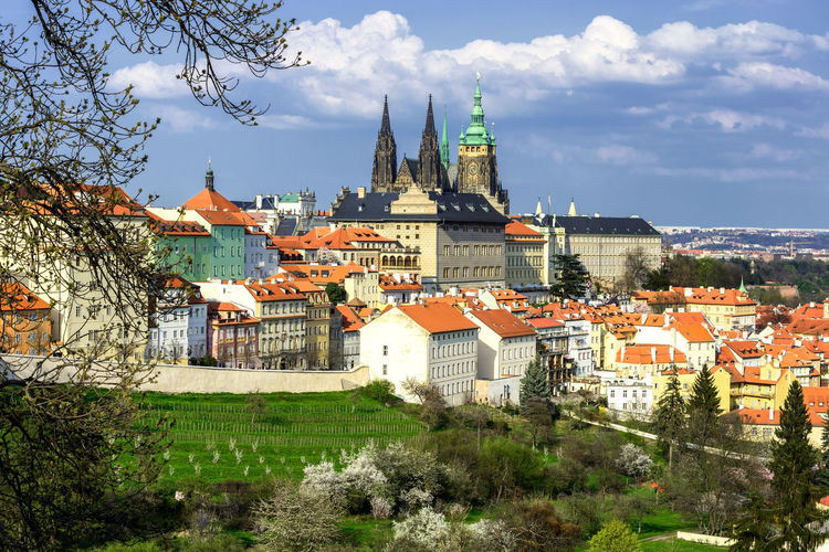Spring time at Prague, Czech republic. Prague Czech Republic Charles Bridge St. Vitus Cathedral Architecture No People Built Structure Sky Building Exterior Building Plant Tree Cloud - Sky City Nature Residential District Religion Place Of Worship Day Spirituality Belief Town Outdoors Cityscape TOWNSCAPE Spire