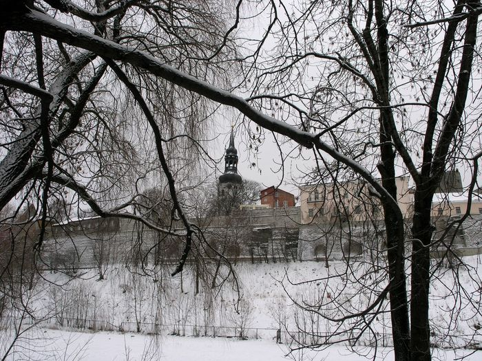 Bare trees by snow covered buildings against sky
