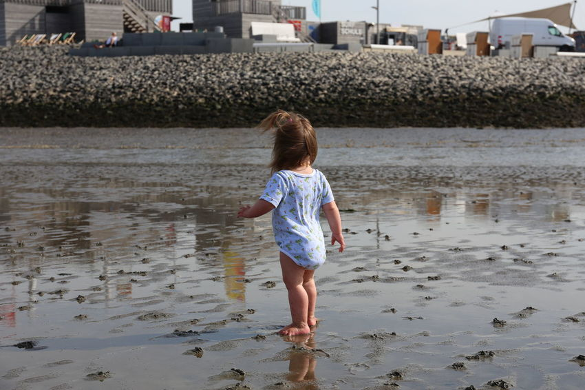 Toddler enjoying the tidal flats Ankle Deep In Water Beach Child Childhood Day Full Length Girls Kleinkind Leisure Activity Lifestyles Nature One Person Outdoors People Real People Rear View Sand Sea Standing Tidal Flats Toddler  Toddler Life Walking Water Watt Sommergefühle