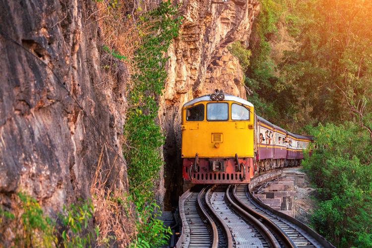 Thai retro train in Kanchanaburi, Thailand. Transportation Rail Transportation Mode Of Transportation Track Tree Railroad Track Public Transportation Plant Travel Train Train - Vehicle Day Nature Land Vehicle No People Land Journey Forest Outdoors on the move