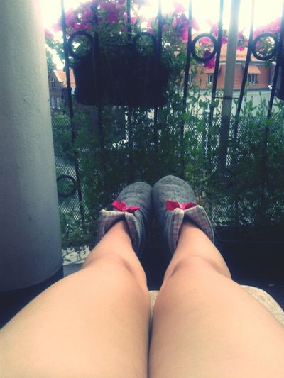 Sunny☀ Relaxing