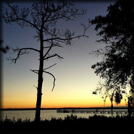Sunset Oldsmar Fl Florida Silouhette Tampa Bay Nature P7taylor Epicearthco Creative Light And Shadow