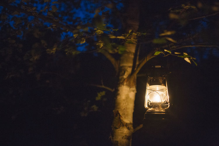Camping Night Lights Nightphotography Romantic Summer Views Summertime Branch Campinglife Illuminated Lantern Lighting Equipment Low Angle View Nature Night Outdoors Summer Summer Vibes Summer ☀ Tree