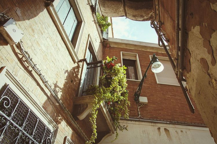 Venice Italy Europe Architecture Façade House Residential  Lamp Street Windows Famous Place City Old Town Balcony