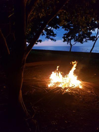 Bonfire and