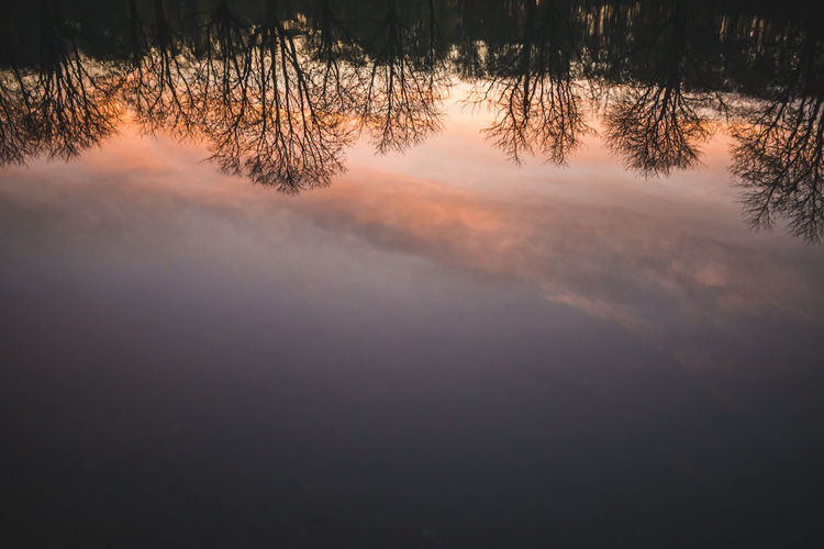 Reflections of trees and sunset on water Lake Water No People Nature Tranquil Scene Trees Tree Reflections Reflections Reflections In The Water Reflection Sunset Reflections Sunset Sunset And Water Cloud Reflections Beauty In Nature