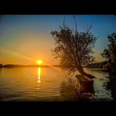 Last night's sunset at the Danube bank Sunset Sunsetlovers Sunsetporn Lumia930photography Sun Viewmysunset Ic_skies Sunset_hub Instamagyarorszag Tgif_nature Rsa_trees Sunset_hub Sunset_madness Lumia Lumia930 Lumiaphotography Hungary Kalocsa Mik