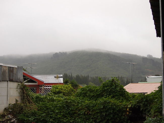 EyeEmNewHere Beauty In Nature Day Fog Gray Misty Mountains  Monteverde Nature No People Weather