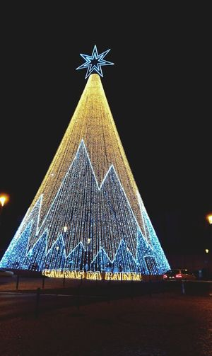 Caldas Da Rainha Portugal Christmas Celebration Christmas Tree Biggest Tree In Portugal Night Illuminated Christmas Decoration Christmas Lights No People Outdoors