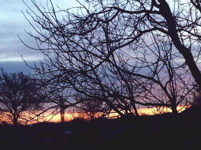 HelloEyeEm Good Morning Taking Photos Nature_collection Eyemphotography Happydays😎