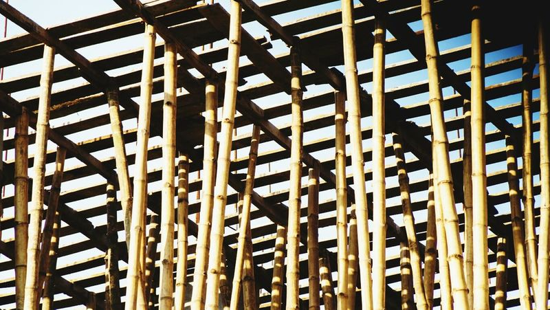 Complex Construction Site Bamboo What Makes You Strong?