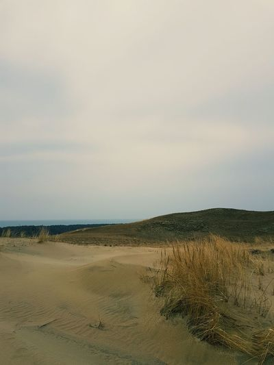 Grey Dunes Baltic Sea Sand Sand Dune Nature Sea Landscape No People Beauty In Nature Sky Curonian Spit Kursiu Nerija Sand & Sea Sand Forest Pine Tree