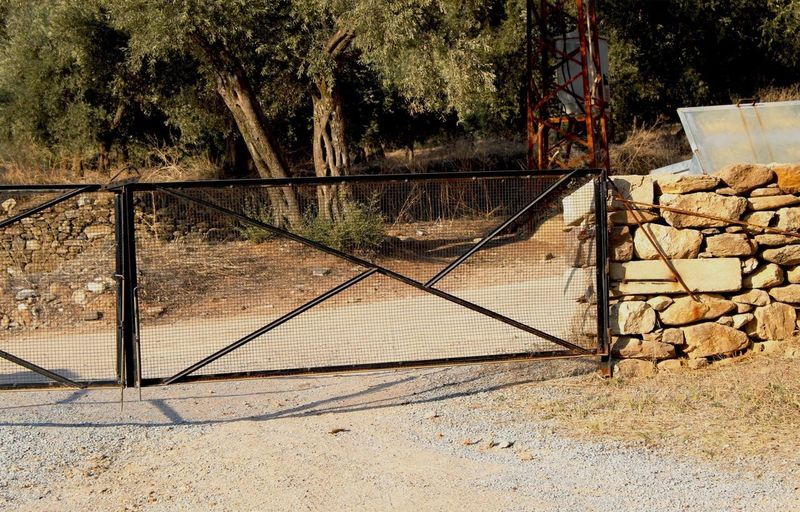 Footpath by railing on field
