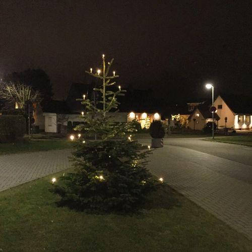363/365 Ein Weihnachtsbaum 🎄 auf weiter Flur Photooftheday Sorcerer86 Eyeemgermany Bilsbekblog Photo365 IPhoneography Iphone6 Eyeemkummerfeld
