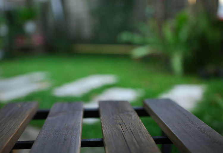 Absence Bench Focus On Foreground Grass No People Park Plant Seat Selective Focus Wood - Material