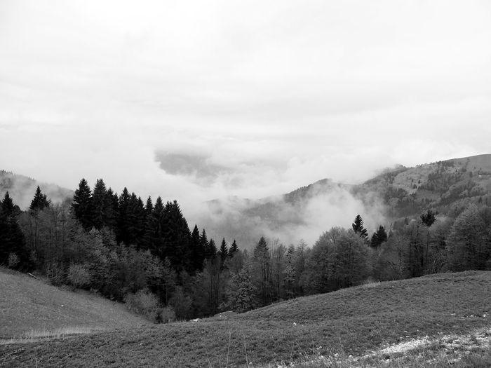 Idyllic shot of landscape in foggy weather against sky