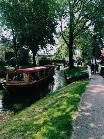Giethoorn Netherlands Plant Tree Transportation Nature Water Mode Of Transportation Growth Day No People