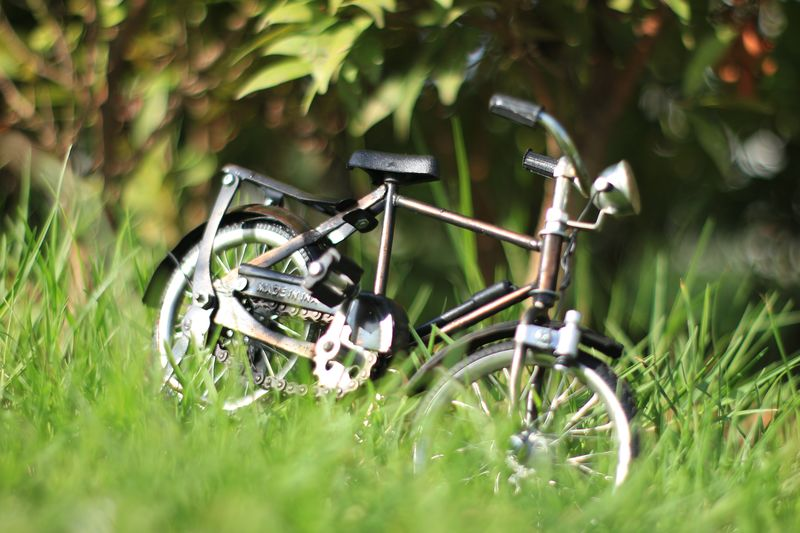 Plant Selective Focus Grass Field No People Day Land Nature Green Color Metal Outdoors Close-up Land Vehicle Transportation Growth Mode Of Transportation Bicycle Stationary Still Life Machinery Wheel Aceh Aceh, Indonesia
