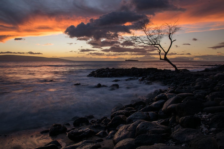 Hawaii Beach Beauty In Nature Cloud - Sky Horizon Over Water Nature No People Outdoors Scenics Sea Silhouette Sky Sunset Tranquil Scene Tranquility Tree Water Hawaii Life Long Exposure Maui