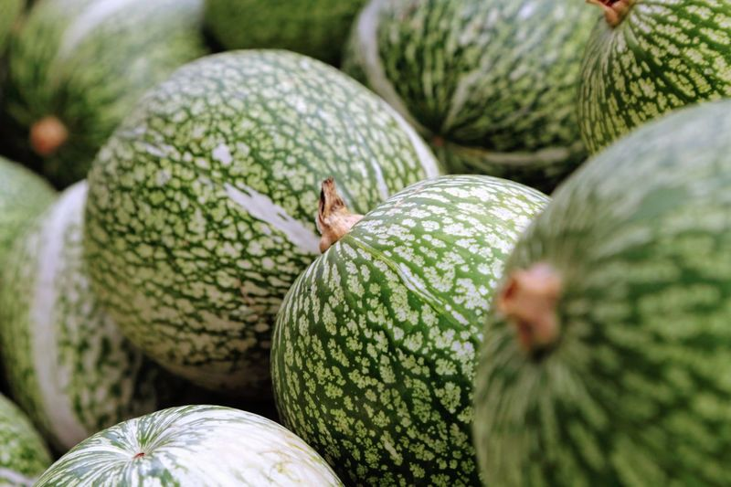 Close-Up Of Melons