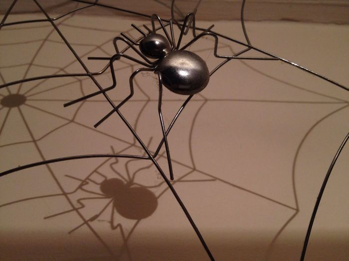 ShadowOnTheWall Shadows & Lights On The Wall Spiders Web Indoors  Love Spiders Spiderlove Webb No People Close-up Day Gathering My Thoughts 🕸🕸🕸🕸 😚 WelcometomyWorld ❤💜