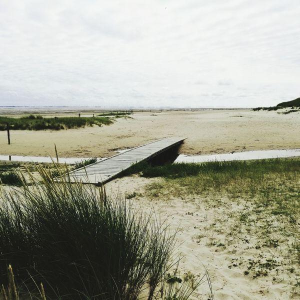 Langeoog Wattenmeer Weltnaturerbe Weltnaturerbe Wattenmeer Seehundbank Beach Nature Beauty In Nature No People Sky Sand Dune Beauty In Nature Landscape Ostfriesland