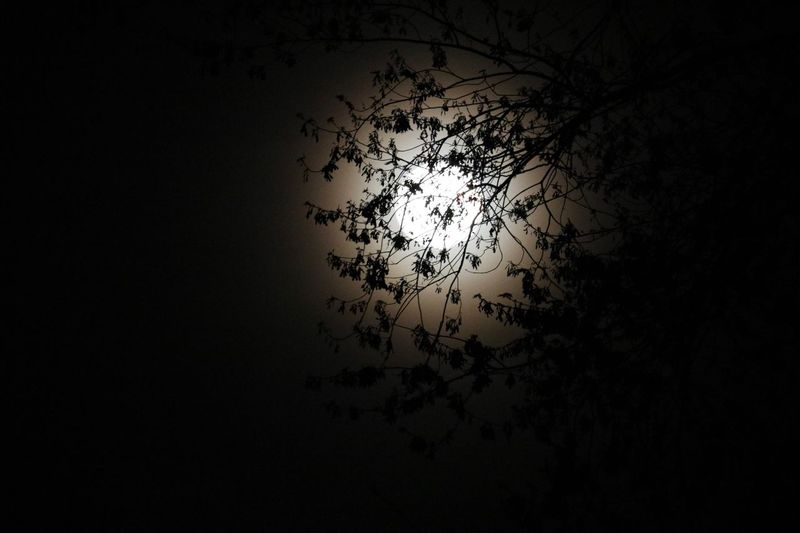 The moon was