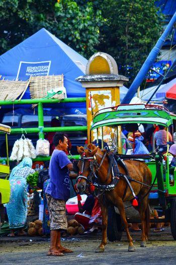 Cidomo market
