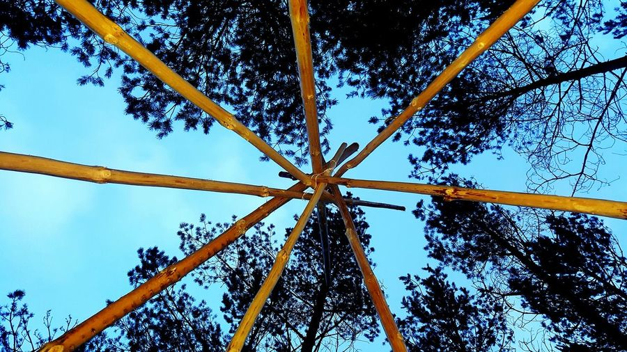 Tree Sky Directly Below Nature Beauty In Nature Outdoors Sweden Västra Götaland Karlsborg Colour Of Life Just A Ordinary Day Tipi Building A Tipi