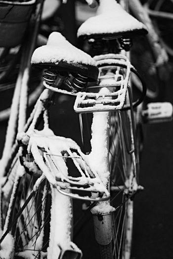 Streetphotography Monochrome OpenEdit Hello World Walking Around The Human Condition