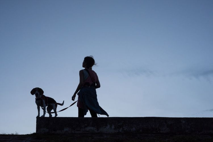 Woman And Dog Walking Against Clear Sky