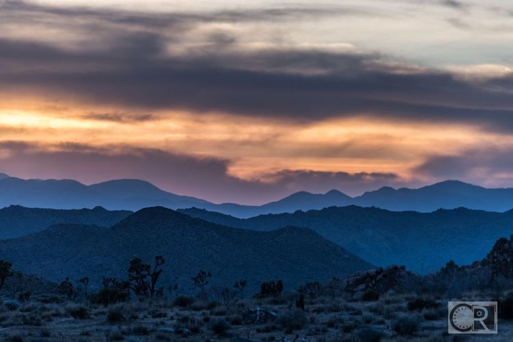 Amber waves. Sunset Mountains Joshua Tree National Park Beauty In Nature Chipriggsphotography Scenics Outdoors Sky No People 365project