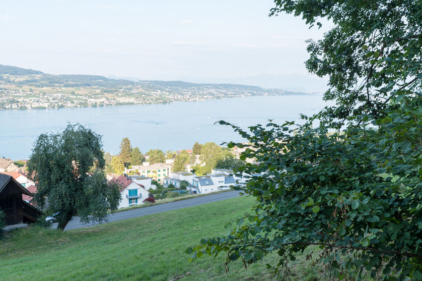 Zürichseerundweg Hiking Trail Waldweg Wanderweg Architecture Beauty In Nature Building Exterior Built Structure City Day Forest Track Fußweg Green Color Growth High Angle View Nature No People Outdoors Plant Scenics - Nature Sea Sky Switzerland Track Trail Transportation Tree Water