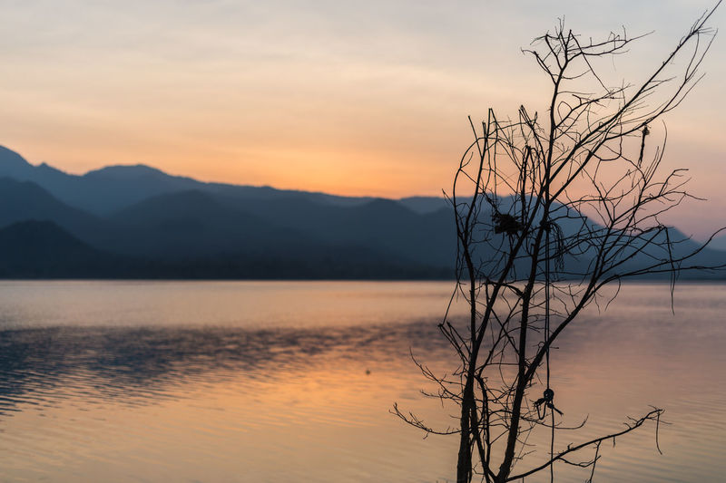 Sunset Sky Tranquility Water Beauty In Nature Scenics - Nature Tranquil Scene Tree No People Plant Lake Bare Tree Orange Color Silhouette Cloud - Sky Reflection Nature Branch Non-urban Scene Outdoors Dead Plant